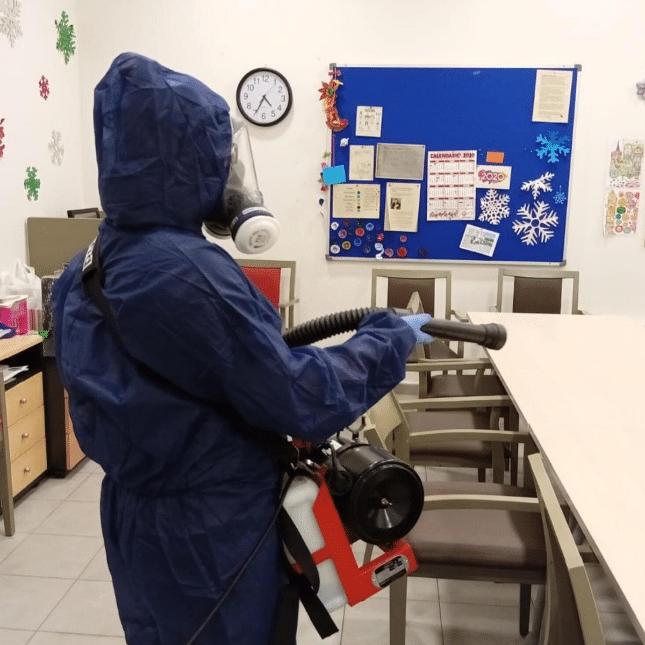 Cómo eliminar las polillas con servicio profesional de desinfecciones