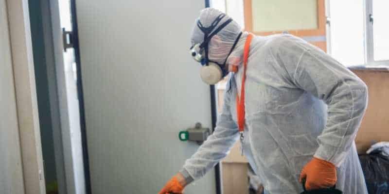 Control De Plagas En Bares Y Restaurantes